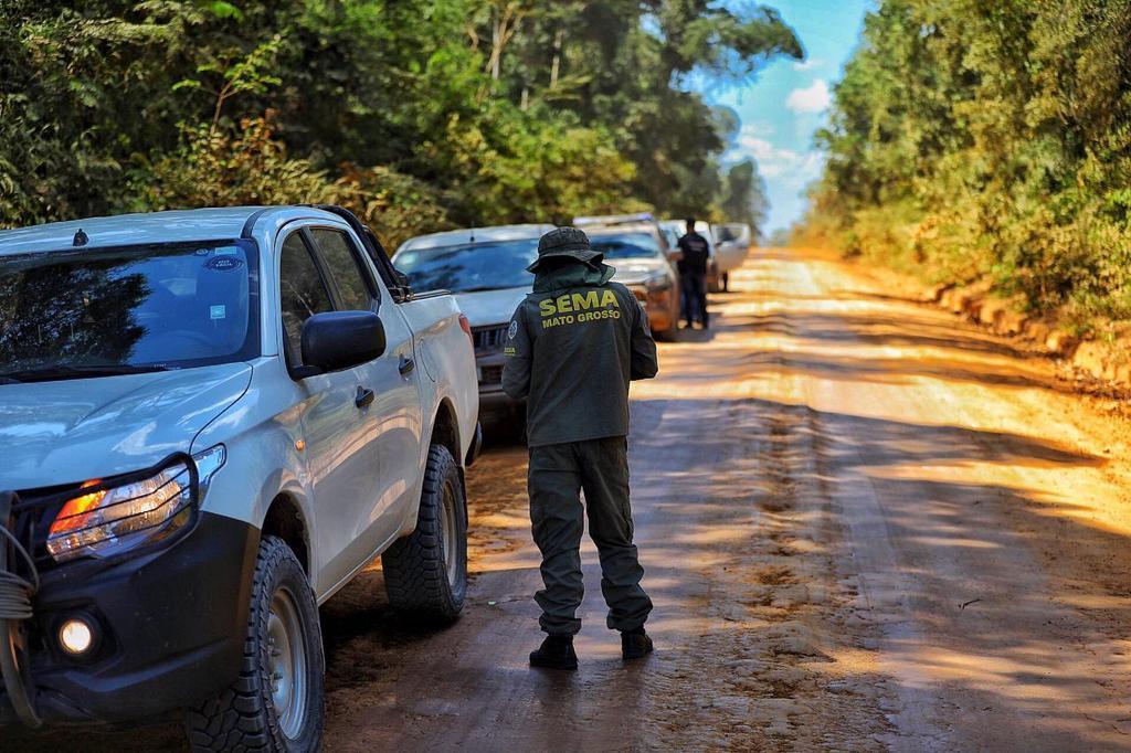 Operação Amazônia interrompe extração ilegal de madeira na Reserva Guariba Roosevelt