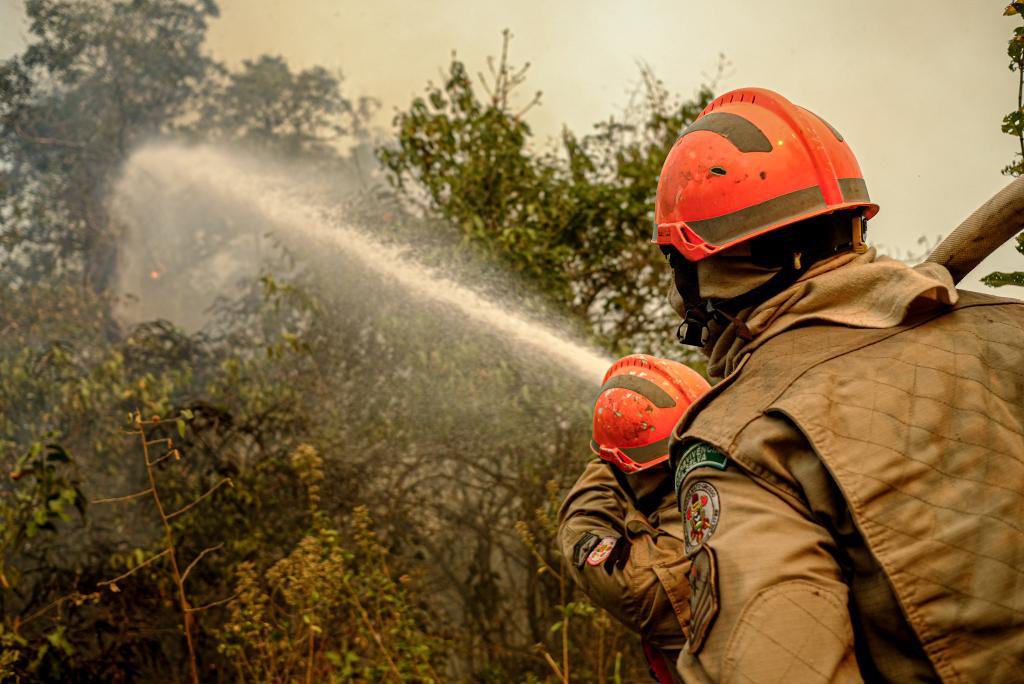 Incêndio no Parque Estadual Encontro das Águas está parcialmente controlado